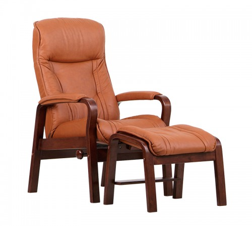 IMG Recliner